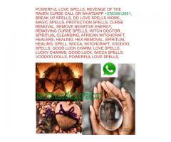 Powerful traditional doctor native healer online