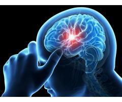 genbrain pills - Dose It Really Work Or Not? Read From Here!